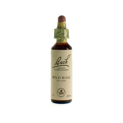 BACH FLOWER REMEDIE 37 WILD ROSE 20ML